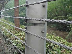 Cable Rope Fence::Anping County Tailong Wire Mesh Products Co.,Ltd